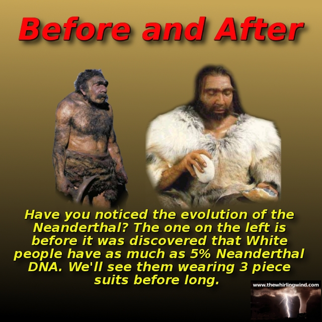 Gallery - Neanderthal Evolution Meme