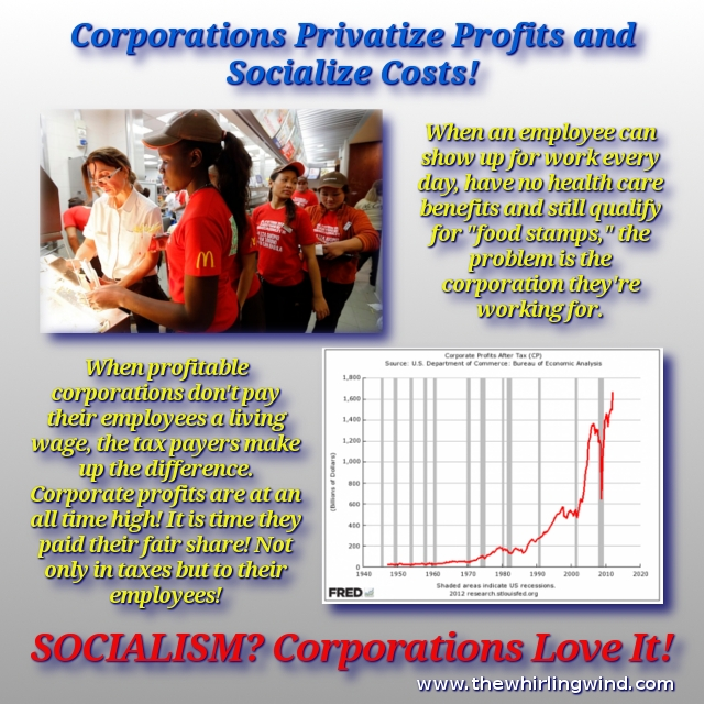 Privatize Profits - Socialize Cost Meme