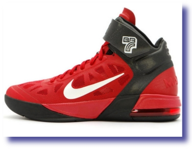 Nike Air Max Fly By Brandon Roy PE