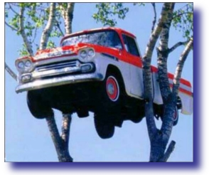 Truck Up A Tree